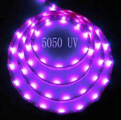LED 5050 150 LEDS ULTRA VIOLET 5 METERS